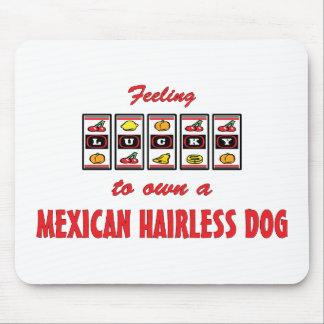 Lucky to Own a Mexican Hairless Dog Fun Dog Design Mousepad
