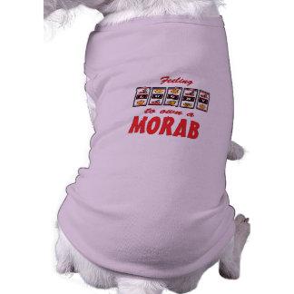 Lucky to Own a Morab Fun Horse Design Pet Tshirt