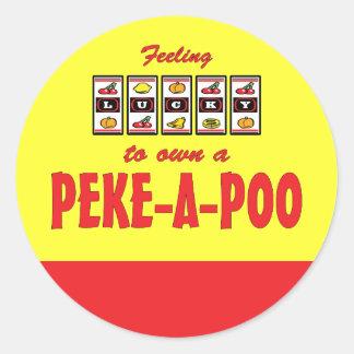 Lucky to Own a Peke-a-Poo Fun Dog Design Round Sticker