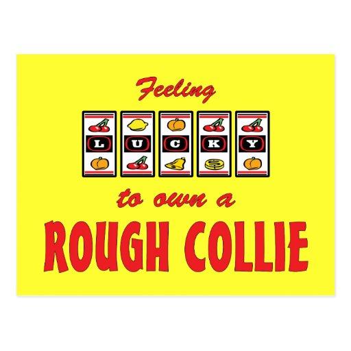 Lucky to Own a Rough Collie Fun Dog Design Postcards