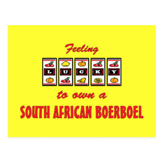 Lucky to Own a South African Boerboel Fun Design Postcard