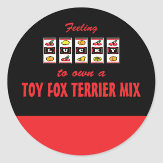 Lucky to Own a Toy Fox Terrier Mix Fun Dog Design Stickers