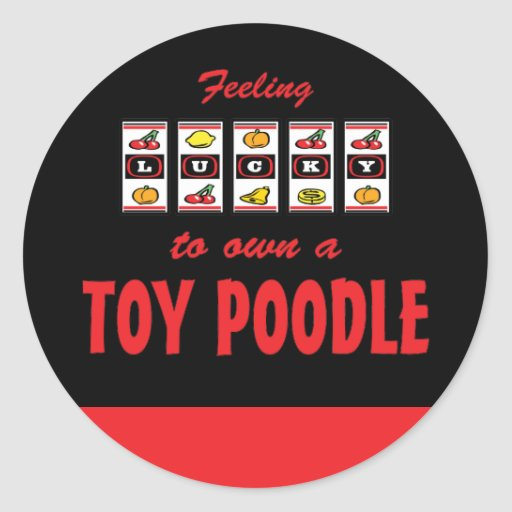 Lucky to Own a Toy Poodle Fun Dog Design Stickers