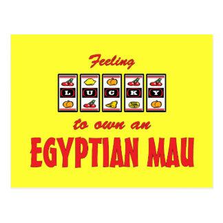 Lucky to Own an Egyptian Mau Fun Cat Design Postcard