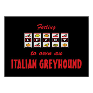 Lucky to Own an Italian Greyhound Fun Dog Design Posters