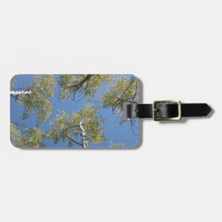 Luggage Tag, Aspen Tree Design Luggage Tag