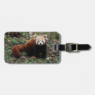 Luggage tag - red panda 3