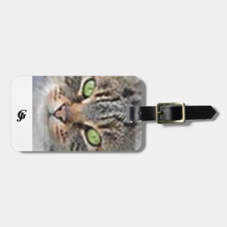 Luggage Tag w/ leather strap