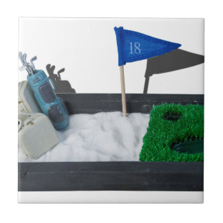LuggageGolfClubsOnEnclosedCourse011815.png Small Square Tile