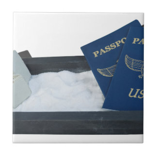LuggageOnSandwithPassports011815.png Small Square Tile