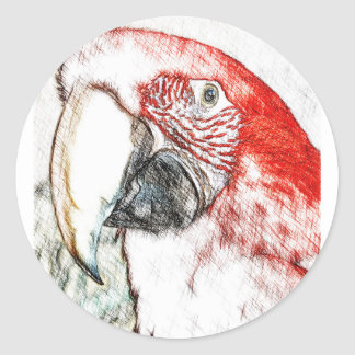 Lulu Macaw Head Sketch Classic Round Sticker