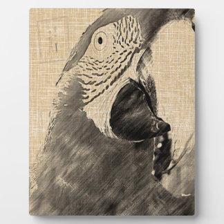 Lulu Macaw Sketch Plaque