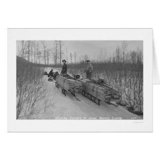 Lumber Dog Seward, Alaska 1917 Greeting Cards