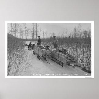 Lumber Dog Seward, Alaska 1917 Print