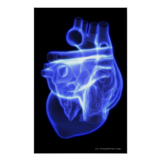 Luminescent view of the human heart poster