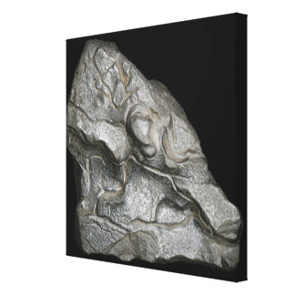 Lump of Silicon Canvas Print