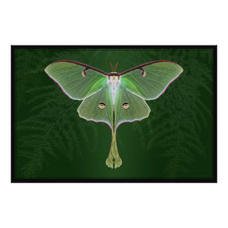Luna Emerald Art Poster -60x40 -other sizes also