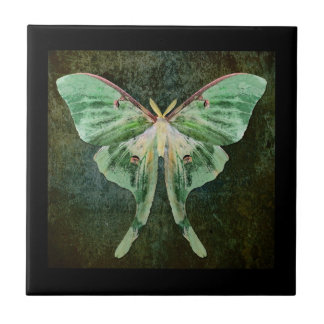 Luna Moth Ceramic Art Tile