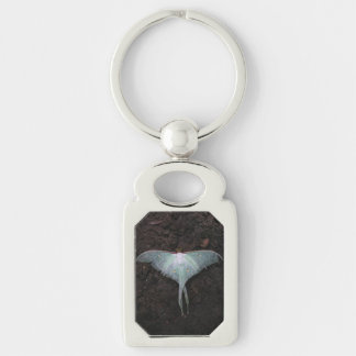 luna moth nature butterfly fairy fantasy dream Silver-Colored rectangle keychain