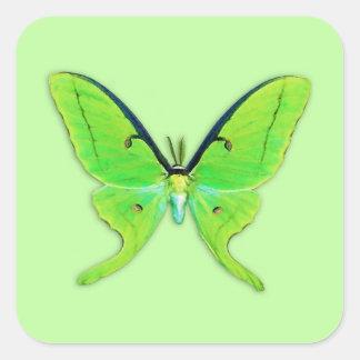 Luna moth on a pale green background square sticker