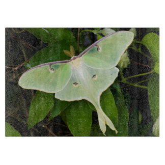 Luna Moth on Carnaby Clematis Cutting Board