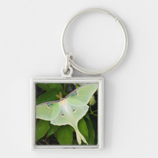 Luna Moth on Carnaby Clematis Silver-Colored Square Key Ring