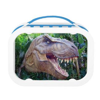 Lunchbox Dinosaurs