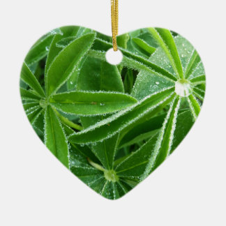 Lupin Leaves Beautiful Green Nature Christmas Ornament