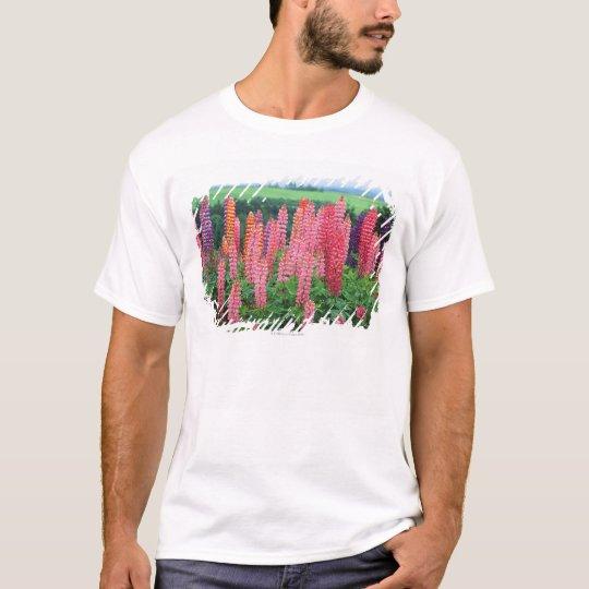 Lupine 2 T-Shirt