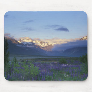 Lupine and the Main Divide, Arthur's Pass, South Mouse Pad