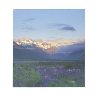 Lupine and the Main Divide, Arthur's Pass, South Notepads