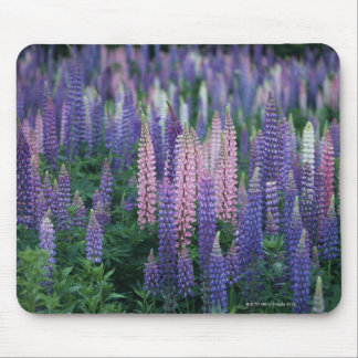 Lupine Mouse Mat