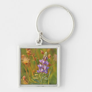 Lupine & Prairie Smoke wildflowers in Montana 2 Silver-Colored Square Key Ring