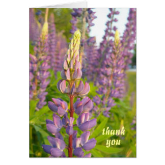 Lupine thank you note card