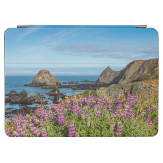 Lupine Wildflowers Cover The Hills iPad Air Cover