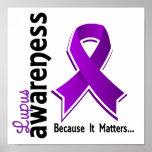 Lupus Awareness 5 Poster