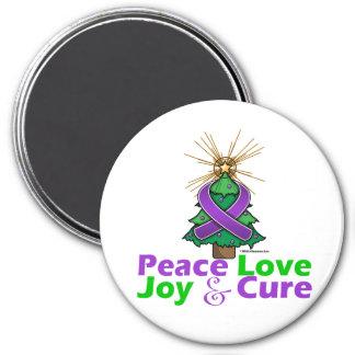 Lupus Peace Love Joy Cure Refrigerator Magnet
