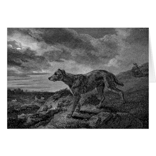 Lurcher Dogs Vintage Drawing Card