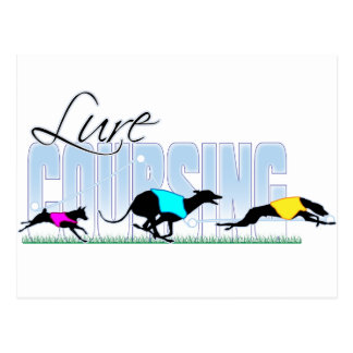 Lure Coursing Dogs Postcard