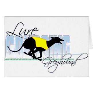 Lure Coursing Greyhound Greeting Card