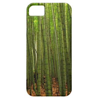 Lush Bamboo Forest iPhone 5 Case