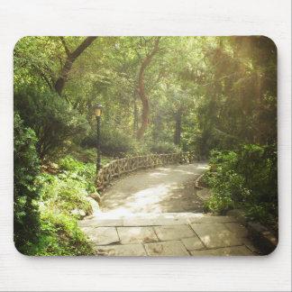 Lush Central Park Landscape, New York City Mouse Mat