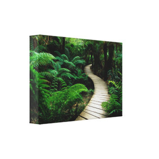 Lush Forest Pathway Canvas Print