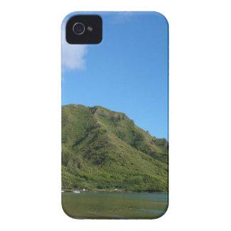 Lush Green Beach Nature Scene iPhone 4 Covers