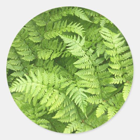 Lush Green Fern Stickers