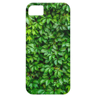 Lush Green Hedge Background iPhone 5 Covers