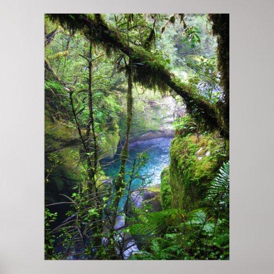 Lush Jungle River Poster