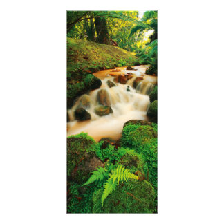 Lush Natural Colors Rack Card