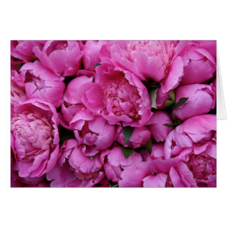 Lush Pink Peony Flowers Greeting Card