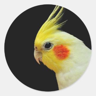 Lutino Cockatiel Round Sticker